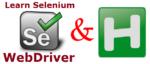 Selenium and AutoHotkey